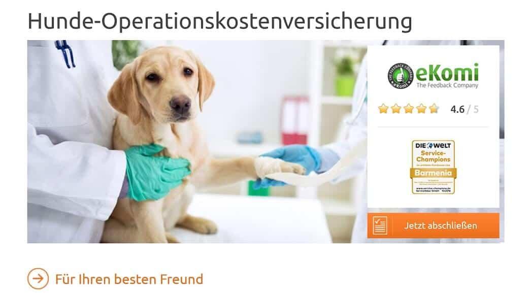 BarmeniaDirekt Hundehaftpflicht-Versicherung Hunde-Operationskostenversicherung
